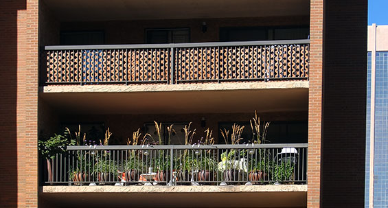 balconygardener